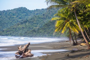 Beach and jungle in Costa Rica